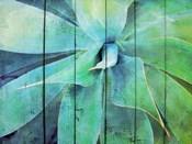 Creative succulent