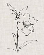 Floral Ink Study I