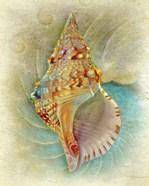 Aquatica I