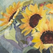 Sunflowers in Watercolor I