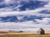Farm & Field I