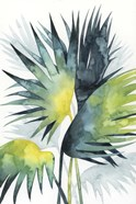 Sunset Palm Composition IV