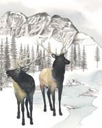 Winter Elk II