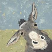 Farm Life-Mule