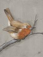 Winter Bird II