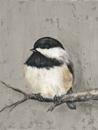 Winter Bird IV