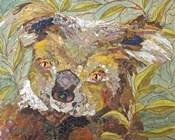 Koala Collage II