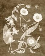Botanical in Taupe III