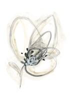 Monochrome Floral Study V