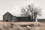 Ohio Fields II