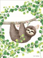 Hanging Around Sloth II