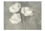 Sketched White Blooms 2