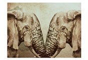 Mirror Elephants