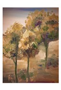 Golden Pageant Trees