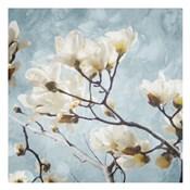 Tree Of White Flowers Mate