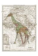 Safari Map 2