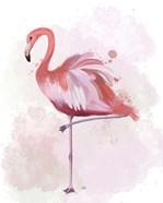 Fluffy Flamingo 4
