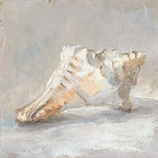 Impressionist Shell Study I