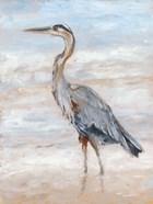 Beach Heron II