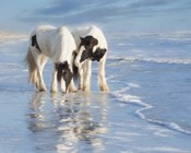 Water Horses I
