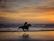 Sunkissed Horses IV