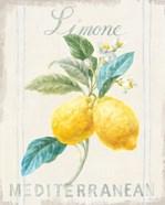 Floursack Lemon III