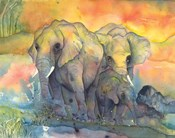 Elephants Crop