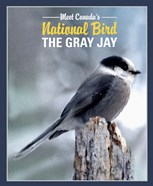Gray Jay Canada's National Bird