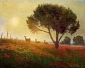 Trees Poppies Deer