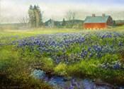 Blue Bonnet Barn