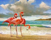 Beach Scene Flamingos