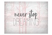 Never Stop Dreaming Pink