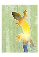 Painted Lizard 3