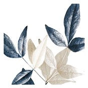 Midnight Leaves 2