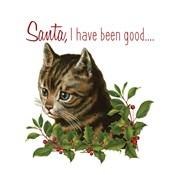 Cat Christmas 1