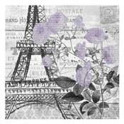 Paris Script Purple 1