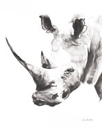 Rhino Gray Crop