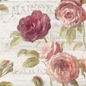French Roses V