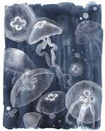 Moon Jellies I