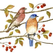 Birds & Berries IV