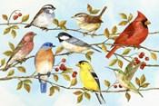 Birds & Berries V
