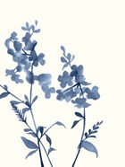 Indigo Wildflowers IV