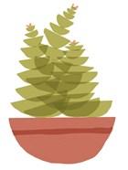 Mod Cactus VI