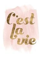 La Vie in Pink IV