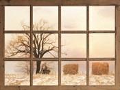 View of Winter Fields