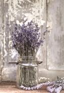 Lavender Bench