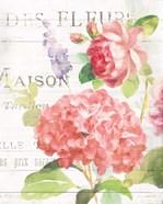 Maison Des Fleurs IV