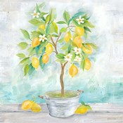 Country Lemon Tree
