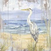 Birds of the Coast Rustic II