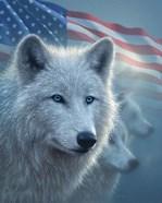 Arctic Wolves America